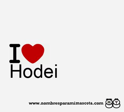 Hodei