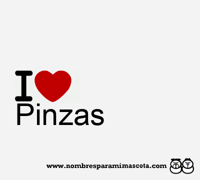 Pinzas